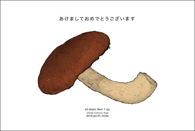 2016年の年賀状は滋賀県産の生椎茸です